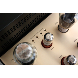 Her ser du M330 - 300B Push-Pull Mono Block Power Amplifiers (300B tubes not inc.) pair fra Canary Audio